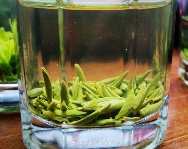 竹叶青茶的功效与作用