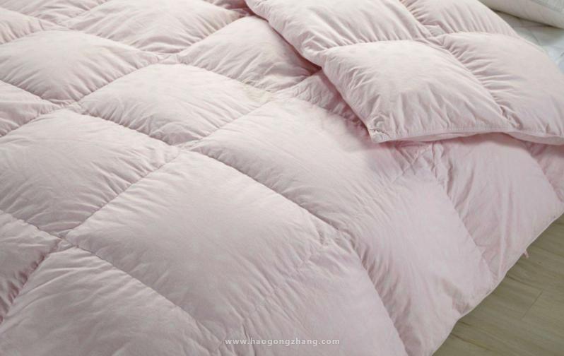 羽绒被大概多少钱_羽绒被价格一般是多少 羽绒被多少钱一床